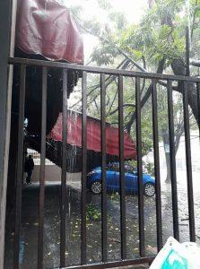 Pohon tumbang mengakibatkan atap Cafe Alibaba yang ada di jalan kampus Unsrat rusak parah