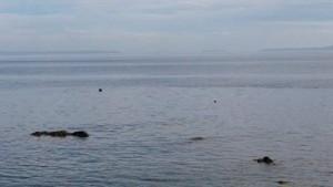 Boboca tempat wisata yang terkenal di pantai malalayang ini semakin tercemar dengan banyaknya sampah yang berserakan